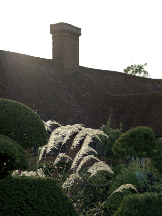 great_dixter_17-08-24__IGP5810.jpg