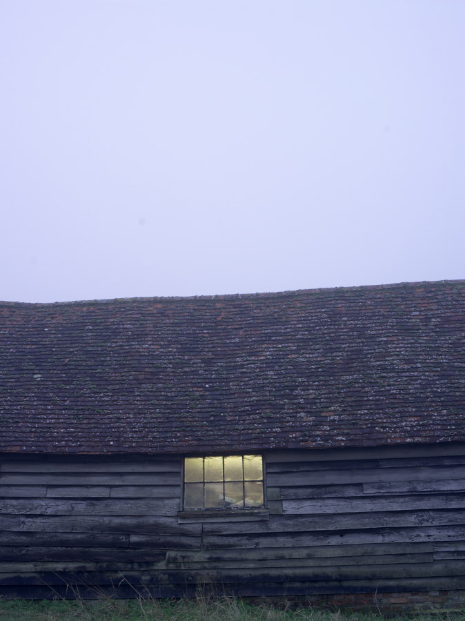 great_dixter_17-12-21__IGP2006.jpg