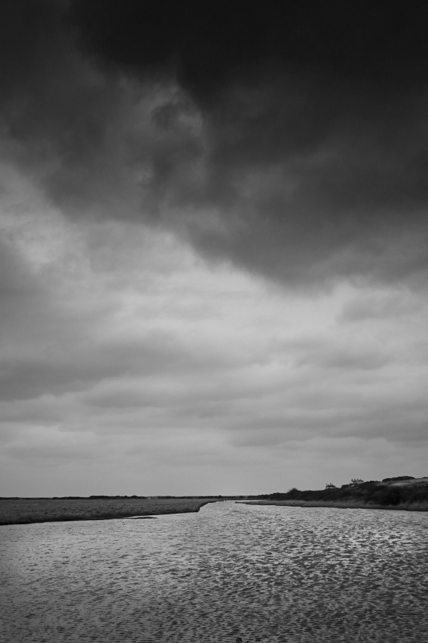 cuckmere_haven_18-03-19_L9213753.jpg