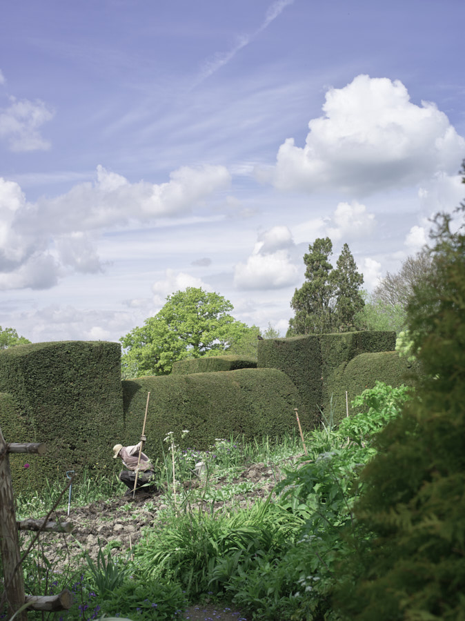 great_dixter_17-05-02__IGP9857.jpg