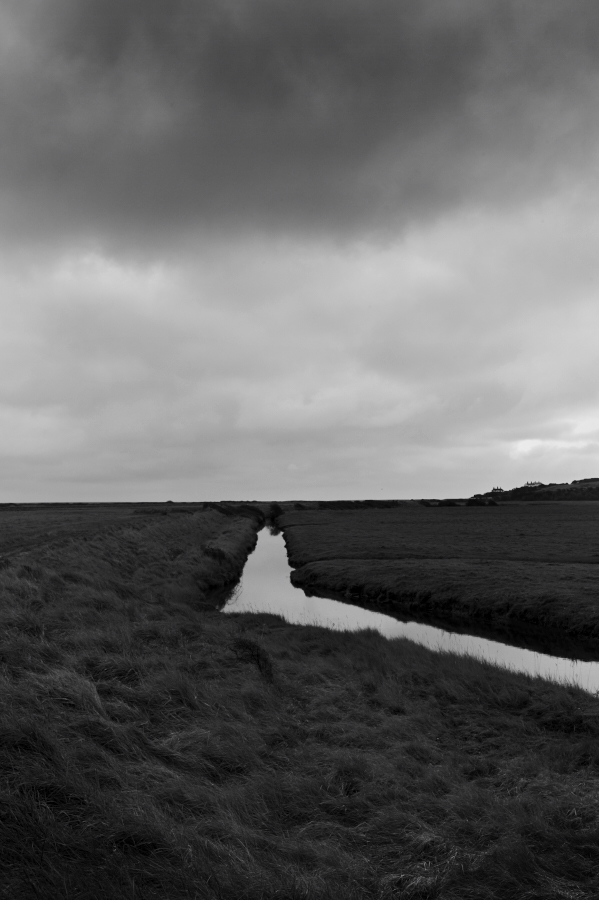 cuckmere_haven_18-01-12_L9213460.jpg